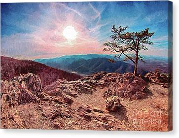 Blue Ridge Rocky Hilltop And Tree At Sunset Ap Canvas Print by Dan Carmichael