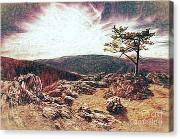 Blue Ridge Rocky Hilltop And Tree At Sunset Fx Canvas Print by Dan Carmichael