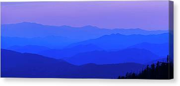Canvas Print featuring the photograph Blue Ridge Spring 08 by Kevin Blackburn