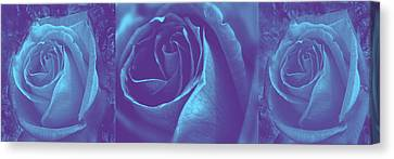 Blue Rose Tryptych Canvas Print by Nareeta Martin