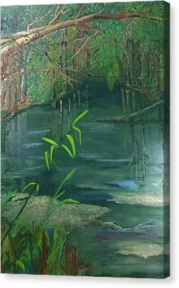 Dunnellon Canvas Print - Blue Run Trail by Cindy Harvell