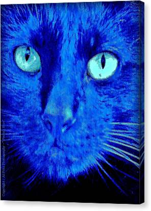 Canvas Print featuring the photograph  Blue Shadows by Al Fritz