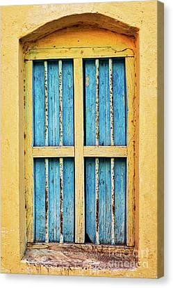 Window Bars Canvas Print - Blue Shutters by Tim Gainey