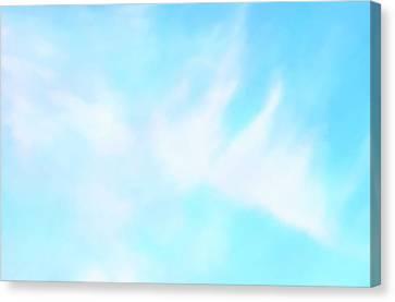 Blue Sky Canvas Print by Anton Kalinichev