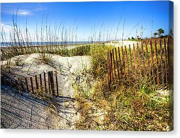 Canvas Print featuring the photograph Blue Sky Dunes by Debra and Dave Vanderlaan