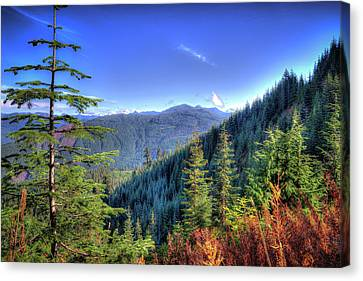 Canvas Print featuring the photograph Blue Skykomish by Spencer McDonald
