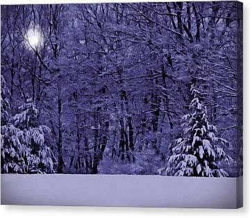 Canvas Print featuring the photograph Blue Snow by David Dehner