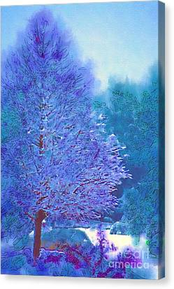 Blue Snow Scene Canvas Print by Donna Bentley