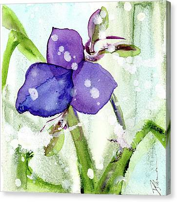 Blue Spiderwort Single Canvas Print