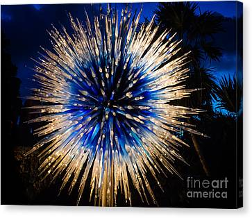 Blue Star At Night Canvas Print