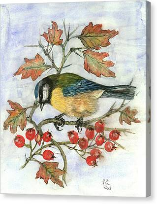 Red Leaf Canvas Print - Blue Tit On Hawthorn by Nell Hill