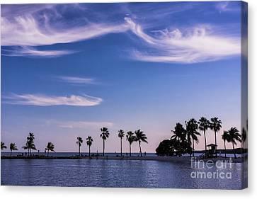 Blue Tropics Canvas Print