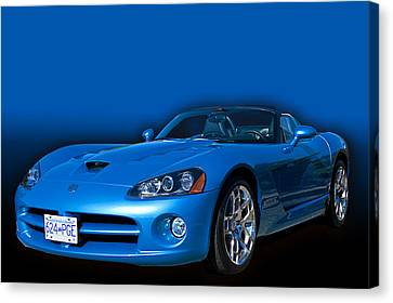 Blue Viper Canvas Print by Jim  Hatch