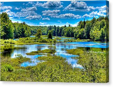 Blue Waters Of The Moose River Canvas Print by David Patterson