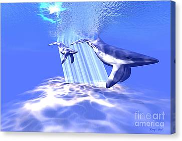 Blue Whales Canvas Print by Corey Ford