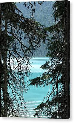 Canvas Print featuring the photograph Blue Whisper by Al Fritz