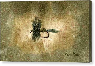 Blue Winged Olive Canvas Print by Sean Seal