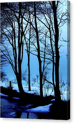 Blue Woods Canvas Print by Karol Livote
