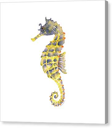 Blue Yellow Seahorse - Square Canvas Print by Amy Kirkpatrick