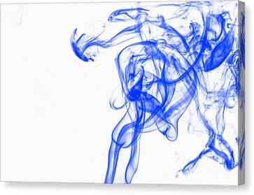 Blue1 Canvas Print