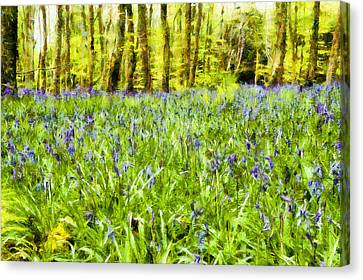 Dap Monet Canvas Print - Bluebell Wood by Nigel R Bell