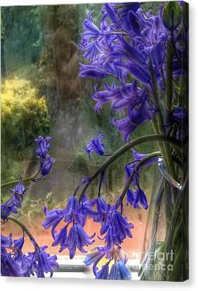 Bluebells In My Garden Window Canvas Print