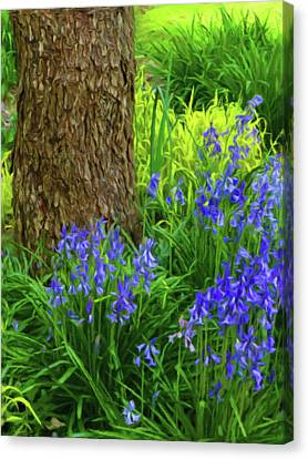 Canvas Print featuring the photograph Bluebells Of Springtime  by Connie Handscomb