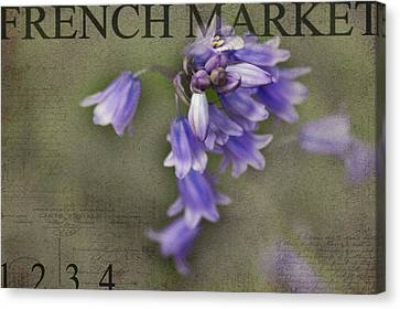 Bluebells Canvas Print by Rebecca Cozart