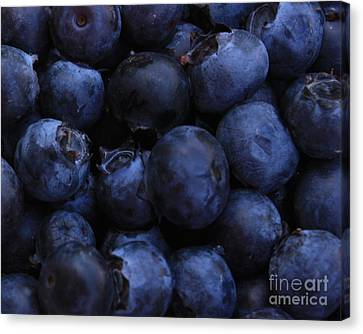 Blueberries Close-up - Horizontal Canvas Print by Carol Groenen
