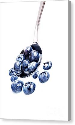 Blueberries Canvas Print by HD Connelly