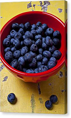 Blueberries In Red Bowl Canvas Print by Garry Gay