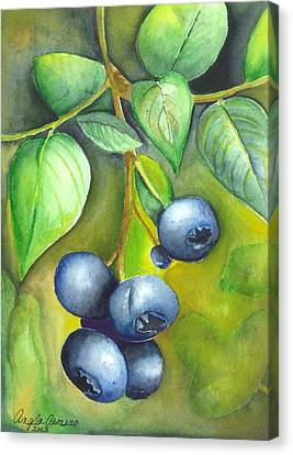 Canvas Print featuring the painting Blueberrries by Angela Armano