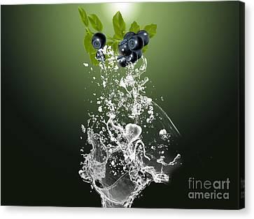 Blueberry Splash Canvas Print by Marvin Blaine