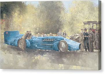 Bluebird And Ghost Canvas Print by Peter Miller