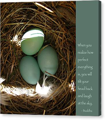 Bluebird Eggs With Buddha Quote Canvas Print by Heidi Hermes