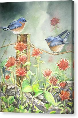 Wire Canvas Print - Bluebirds And Indian Paintbrush by Patricia Pushaw