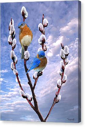 Bluebirds Singing A Song Canvas Print
