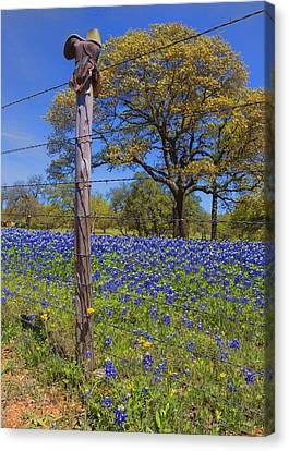 Barbed Wire Fences Canvas Print - Bluebonnet Boot Post by Stephen Stookey