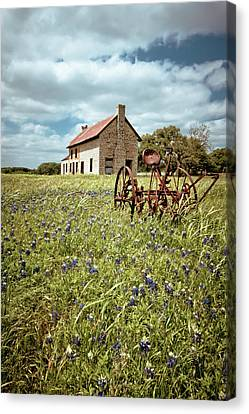 Old Country Roads Canvas Print - Bluebonnet Fields by Linda Unger