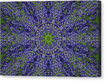 Bluebonnet Lace Kaleidoscope Canvas Print by Robyn Stacey