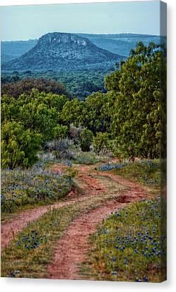Bluebonnet Road Canvas Print