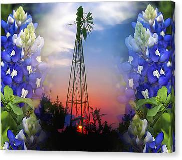 Bluebonnets And Windmill Canvas Print by Stephen Anderson