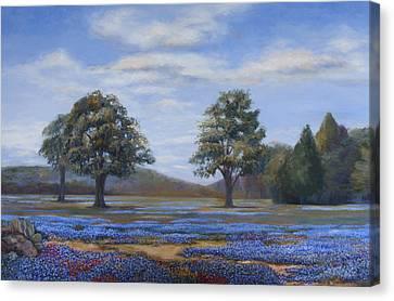 Bluebonnets In Texas Canvas Print by Susan Thacker