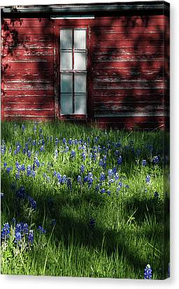 Canvas Print featuring the photograph Bluebonnets In The Shade by David and Carol Kelly