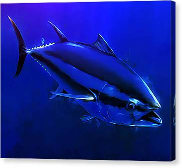 Bluefin Tuna Portrait 1 Canvas Print by Scott Wallace