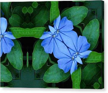 Bluegreencomp 2006 Canvas Print