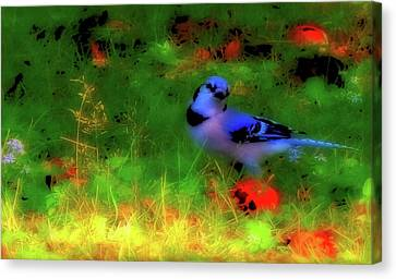 Michael Canvas Print - Bluejay-fall Approaching-a Rainbow Play Of Colors by Mike Breau