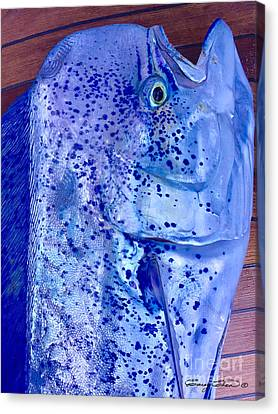 Blues Mahi Canvas Print by Carey Chen