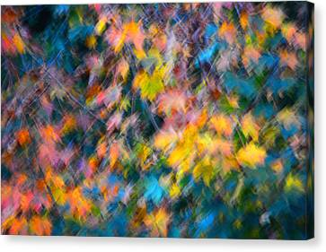 Blurred Leaf Abstract 3 Canvas Print