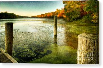Blydenberg Park In The Fall Canvas Print